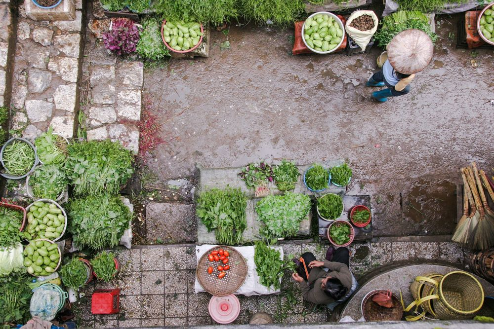"""A refined, confined area they can reign over"", Vegetable market photo by  Siamak Djamei"