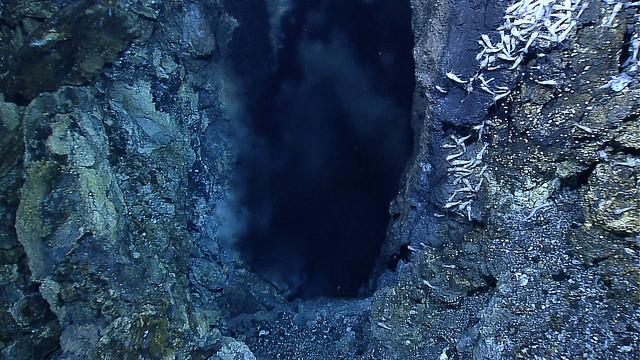 Orifice of Von Damm hydrothermal vent in the Carribean, source of heat, minerals & biodiversity. Photo by  NOAA .