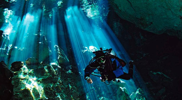 Cenote, underground fresh water in the Yucatan, Mexico. Photo by  jhovani_serralta