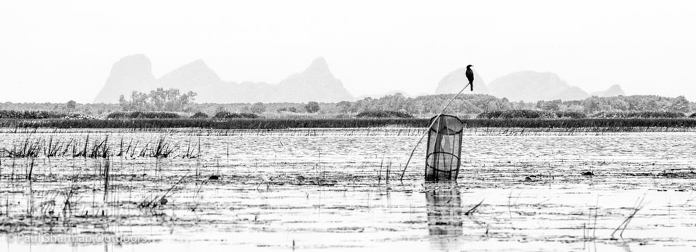 A lone cormorant sits above a fisherman's net in Thale Noi with distant mountains as a backdrop.