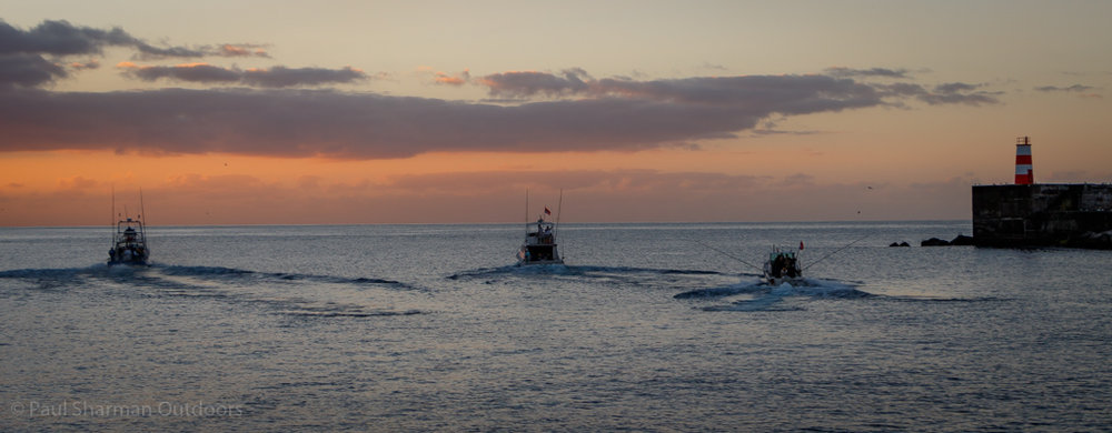 3 of the team boats gun their engines at daybreak on day 2 of the tournament at Ponta Delgada.