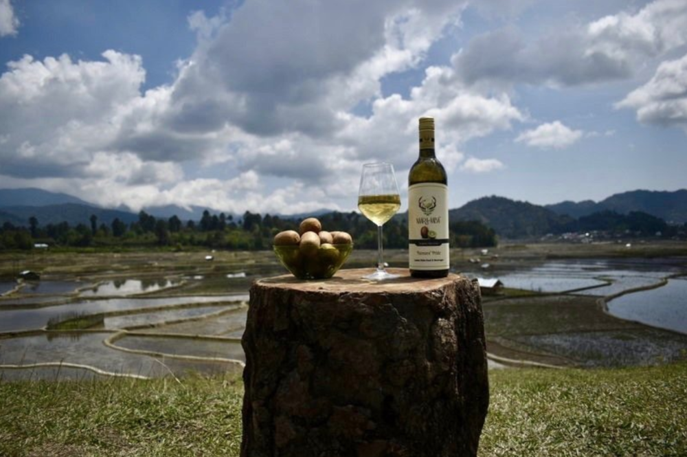 Gastro Obscura: This Indian Winery Wants You to Try Kiwi Wine - A wife-and-husband team hopes the unusual drink will benefit a remote and rugged region.