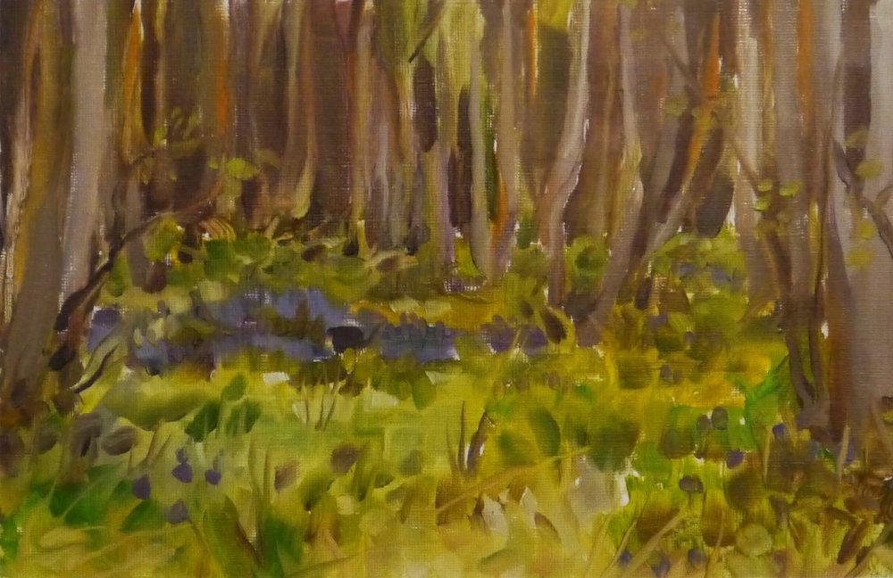 Oil Painting Plein Air