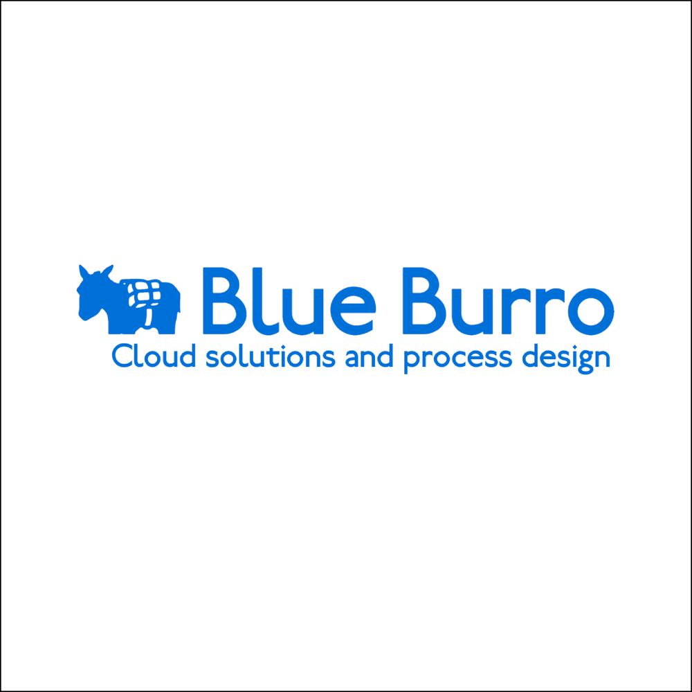 blue burro management consulting