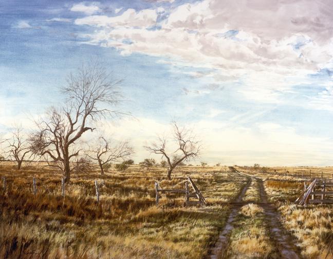 Texas Quail Hunt