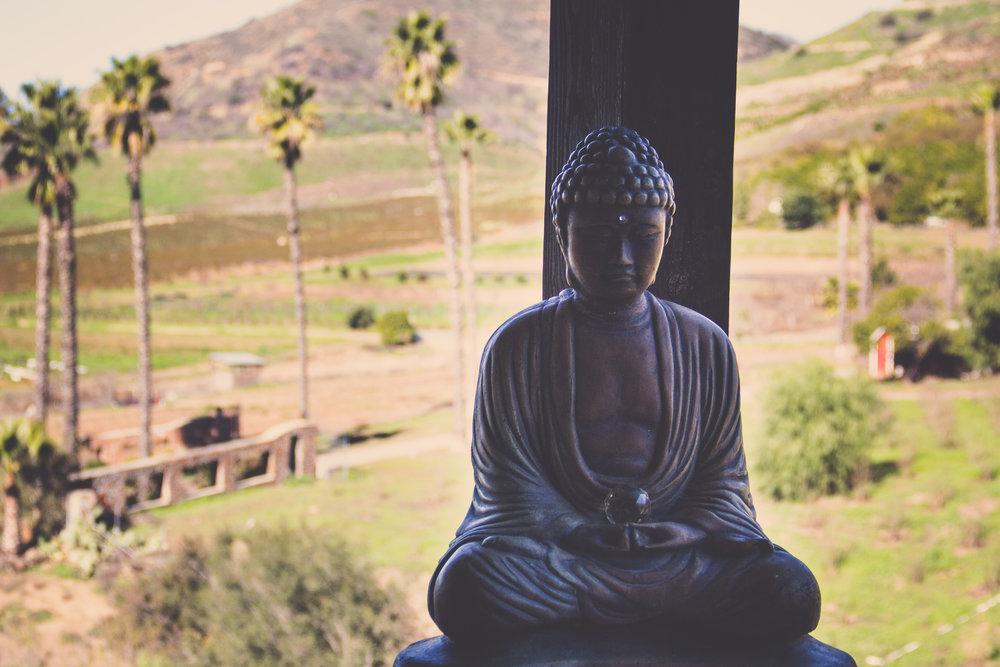 *buddha1.jpg