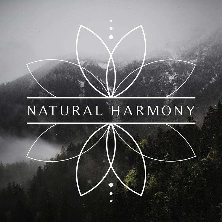 NH_logo_mtns+copy.jpg