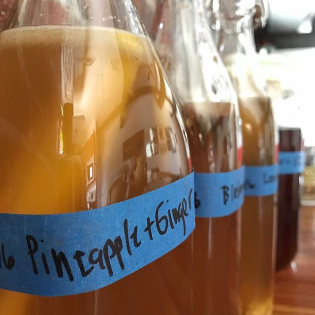 Home brew for health! Weekend Experiments.