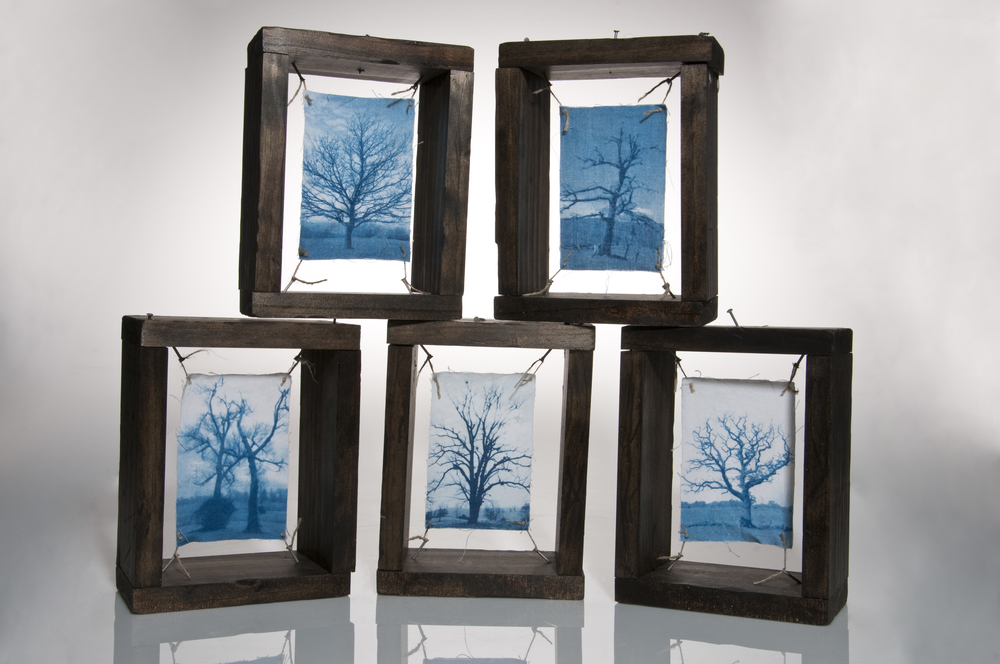 Lexington Trees.jpg