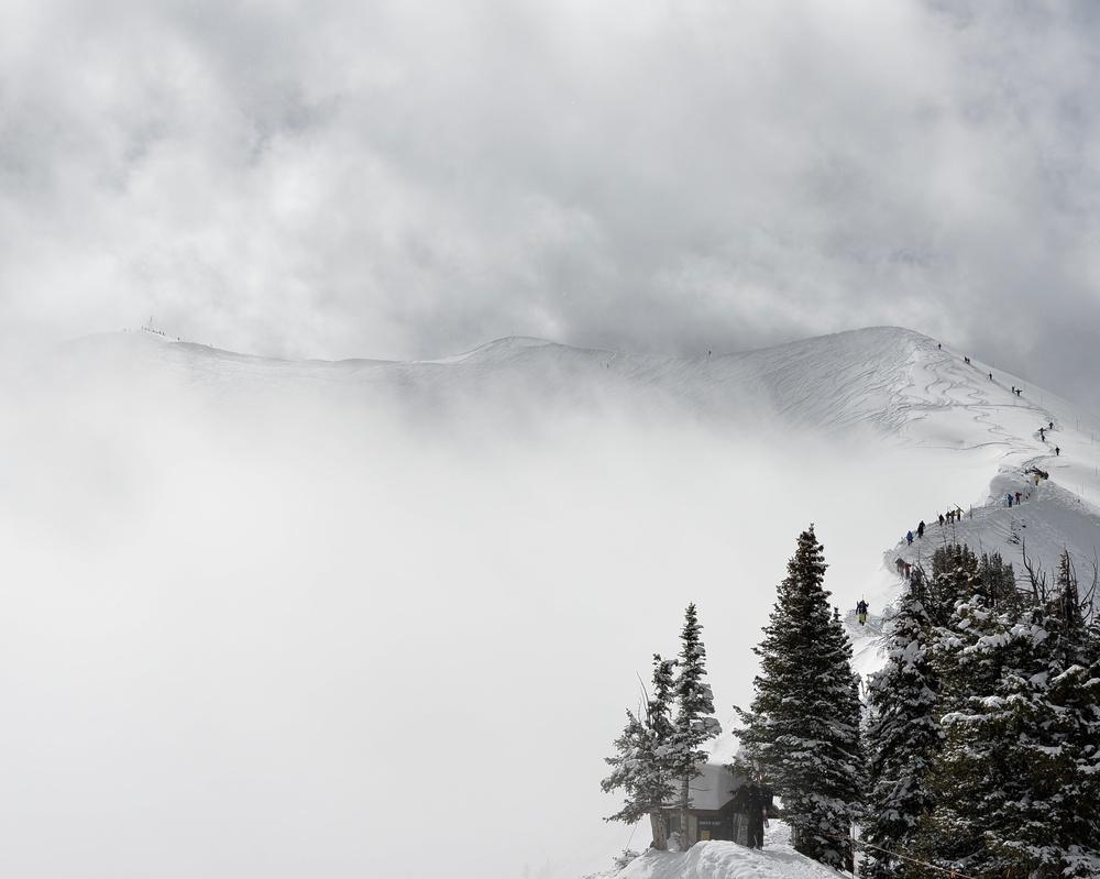 Aspen, 2014