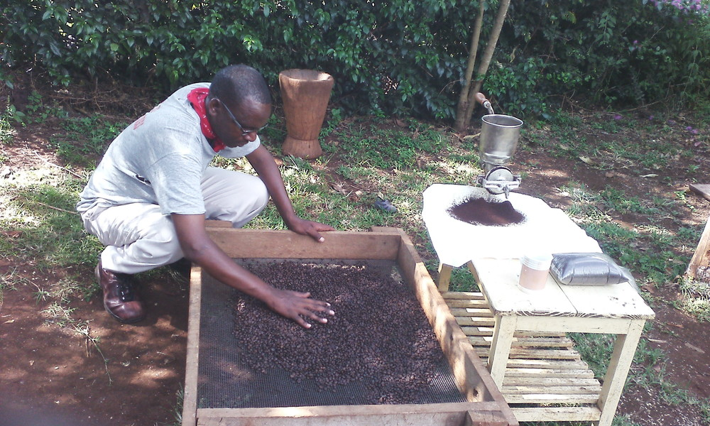 Gwandu Coffee consists of the finest, rare Tanzania peaberry variety, grown only on the misty slopes of the Ngorongoro Crater near the famous Olduvai Gorge, where our first ancestors lived.