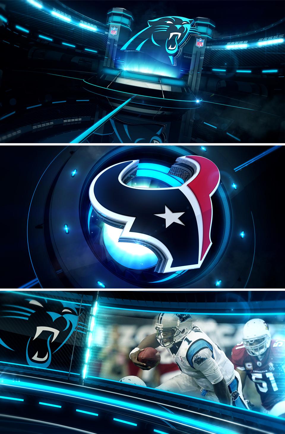 Panthers02.jpg