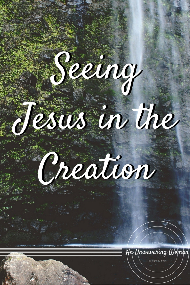 Seeing Jesus in the Creation