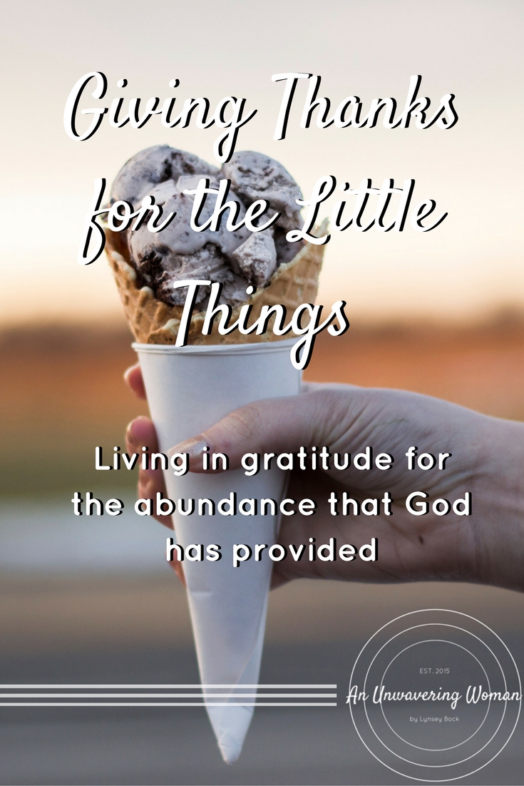 Giving Thanks for the Little Things