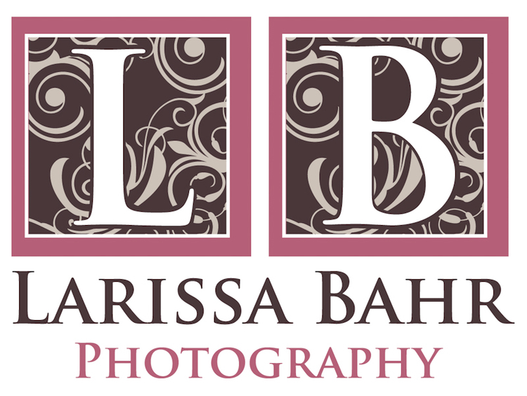 Larissa Bahr Photography
