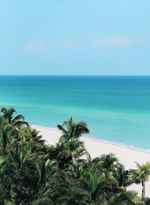 Miami VSCO16.jpg