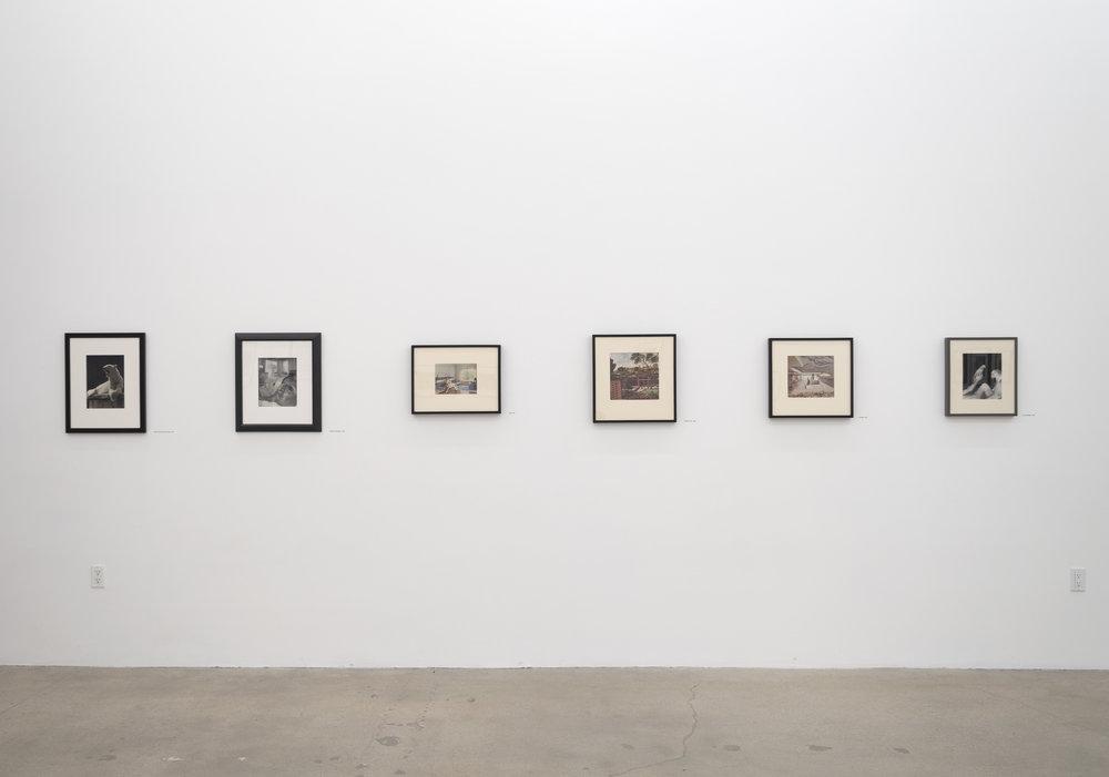O'Reilly Exhibition 3.jpg