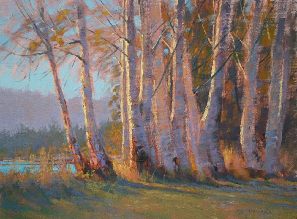 BJaenicke-Aspens Reveling in Evening Light-12x16 oil.jpg