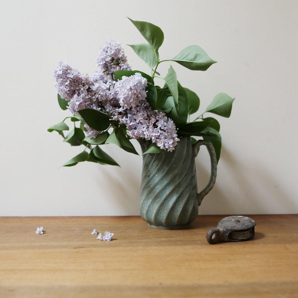LilacsPitcher.jpg
