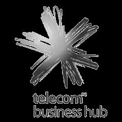 telecombusinesshub.png