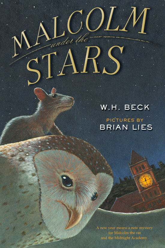 Copy of Malcolm Under the Stars