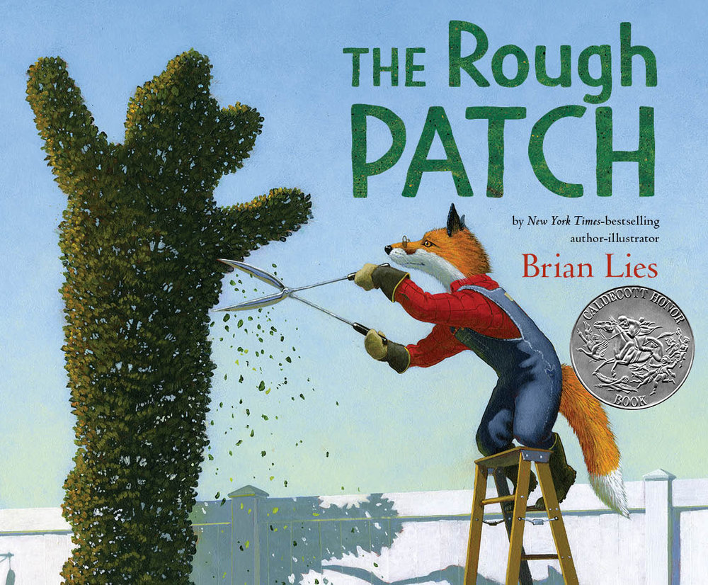 TheRoughPatch cover A.jpg