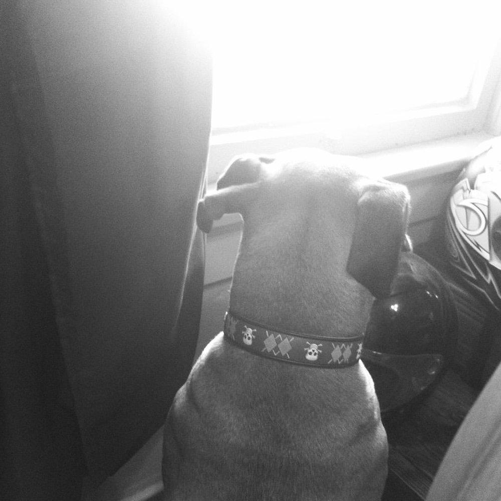 Diesel watching for bad guys