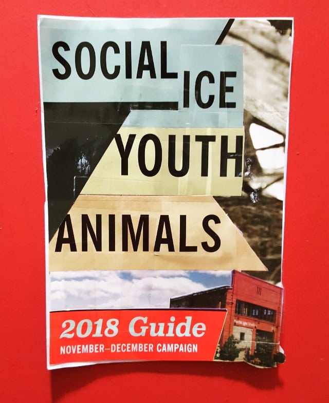 """""""Social Ice Youth Animals"""" Don't forget your 2018 guide!! #socialiceyouthanimals #instawhat #instathis #2018guide"""