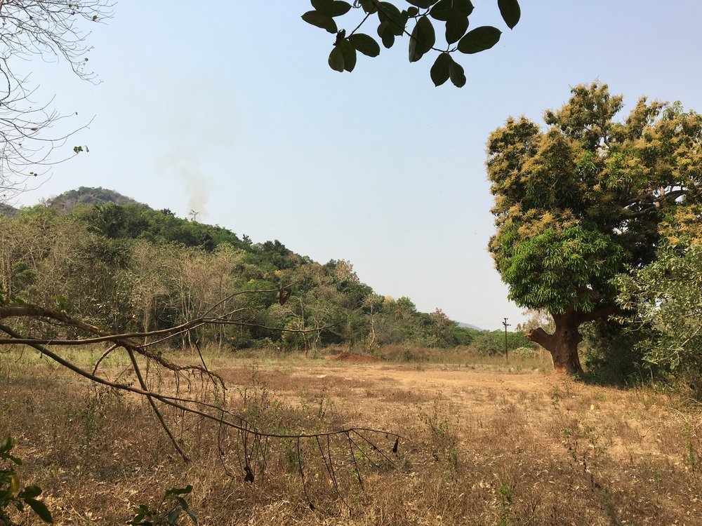 Land purchased for 100 bed Children's Home -