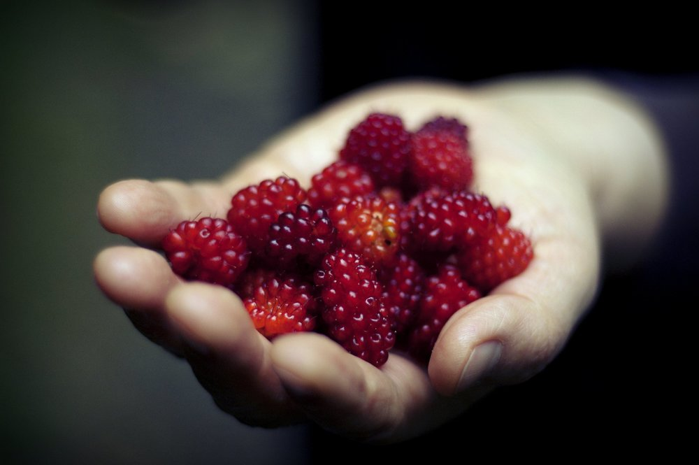 raspberries-hand.jpg