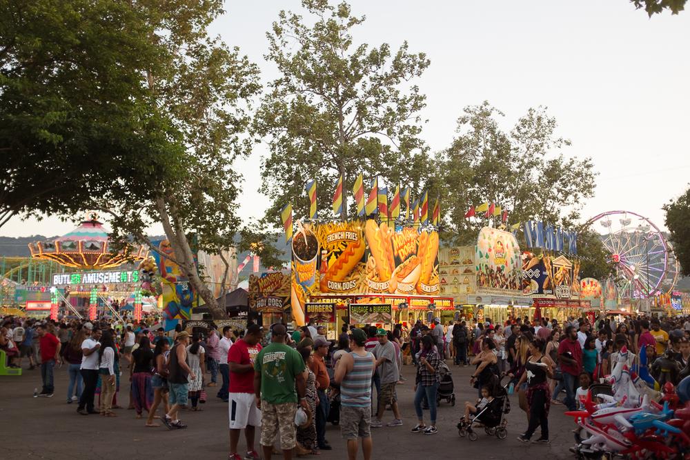 alameda-county-fair-9.jpg