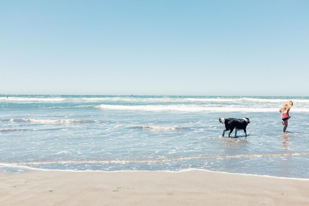 stinson-beach-3.jpg
