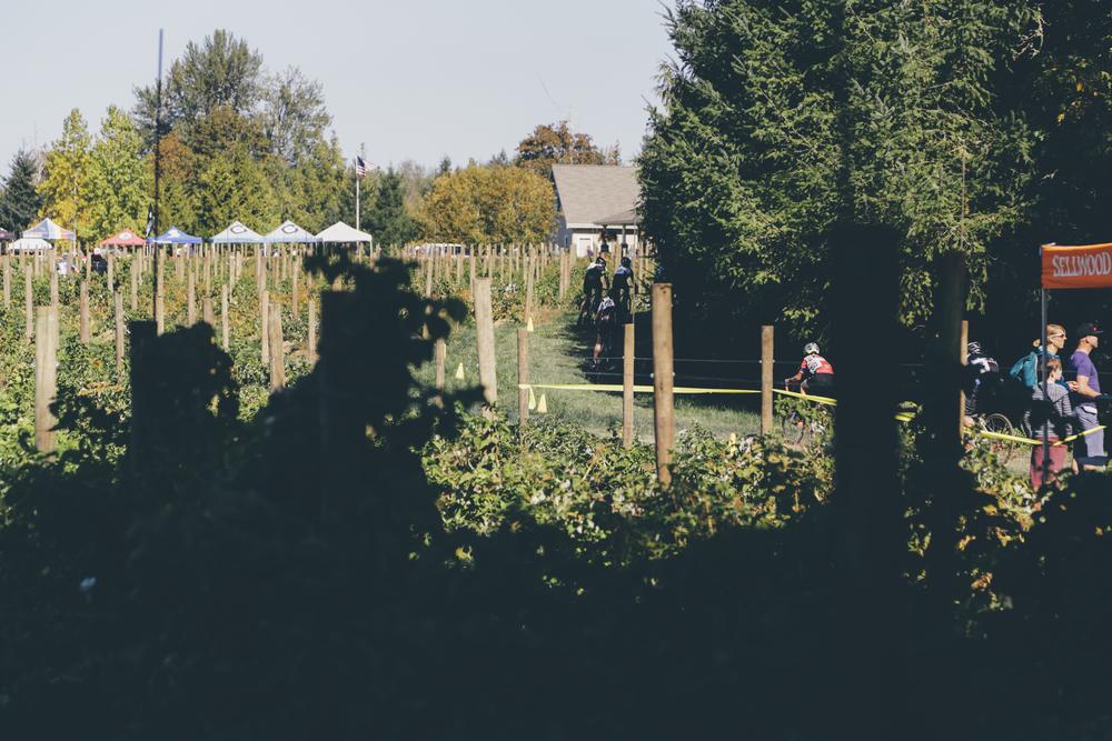 Heiser Farms-34.jpg