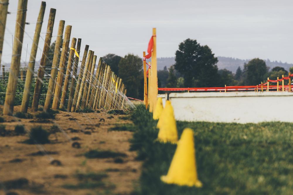 Heiser Farms-61.jpg