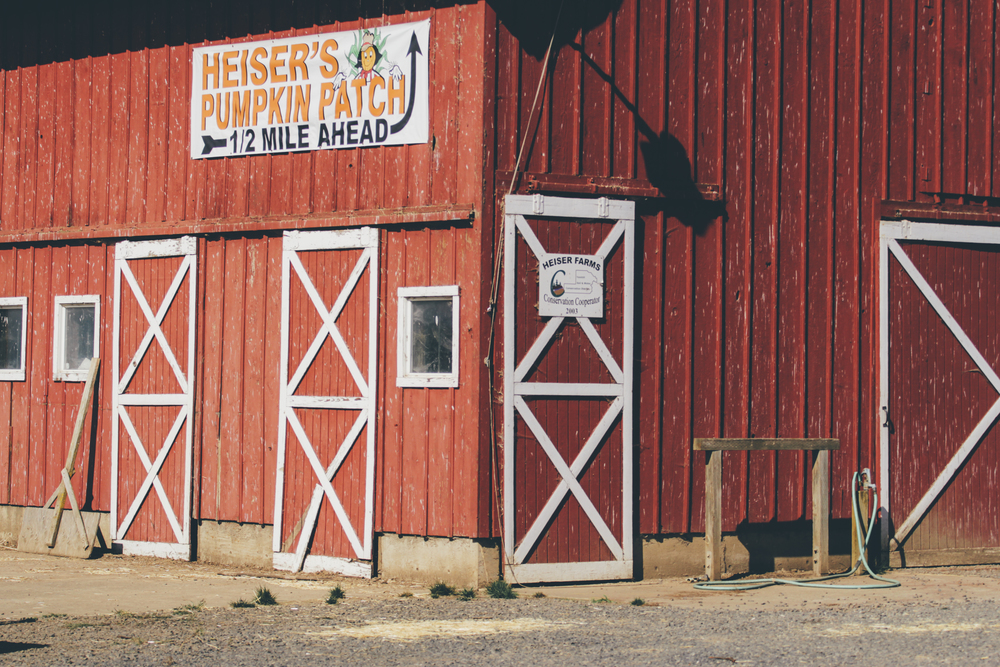 Heiser Farms-69.jpg