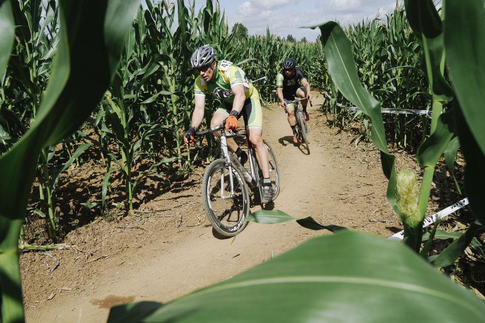 corn cross-19.jpg