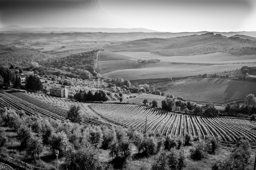 Kellogg - travel - Italy 2012-0519.jpg