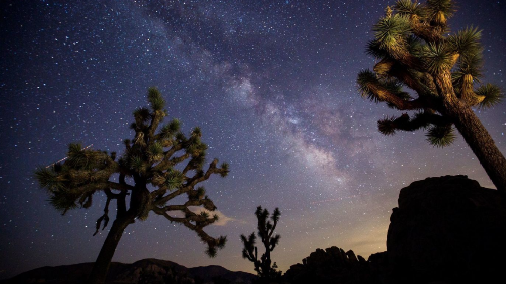 Joshua Tree Nighttime Inspiration.  Photo credit    here   .