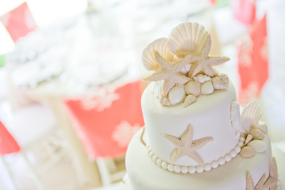 Coastal Bliss Cake 2.jpg