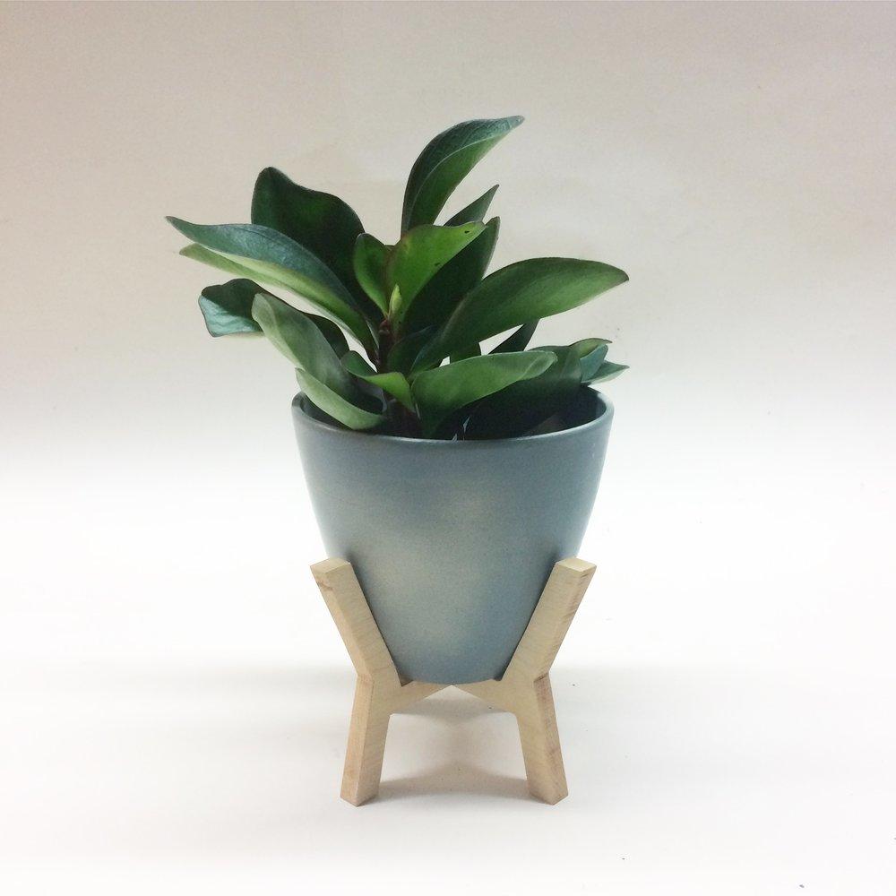 Medium Tabletop Planter On Wood Stand