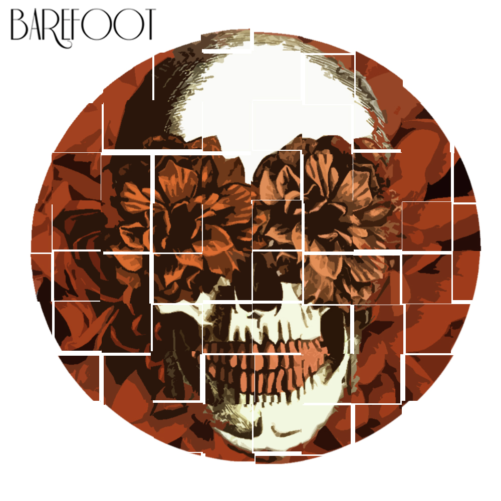 Barefoot music charming souls album cover.jpg