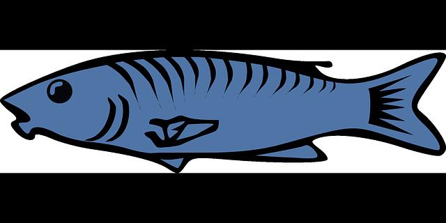 fish-30830_640.png