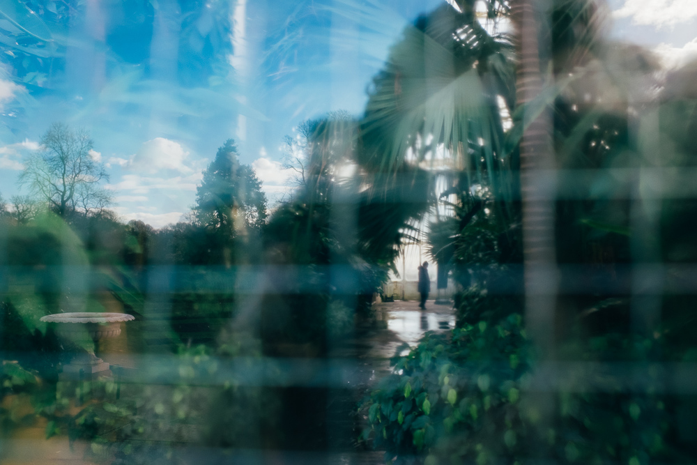 Kew Gardens - March 2016