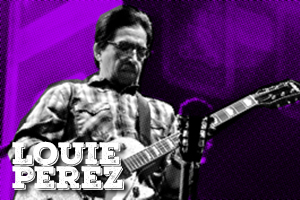 Louie Pérez is one of the guitarists of the multi – Grammy award winning band, Los Lobos. Pérez, Hidalgo & co continue releasing excellent LPs after 37 years. Louie is using our Vyagra boost & Time delay pedals.