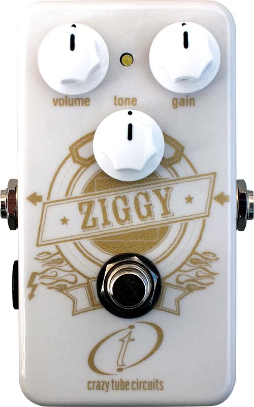 ziggy_new.jpg