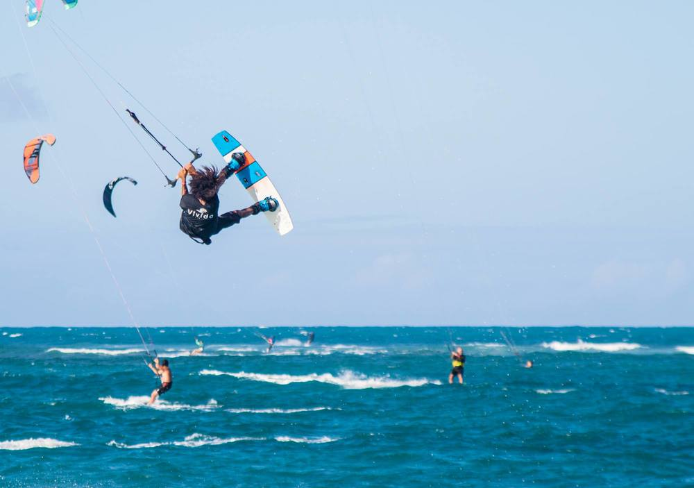 greidy vivida surf tee.jpg