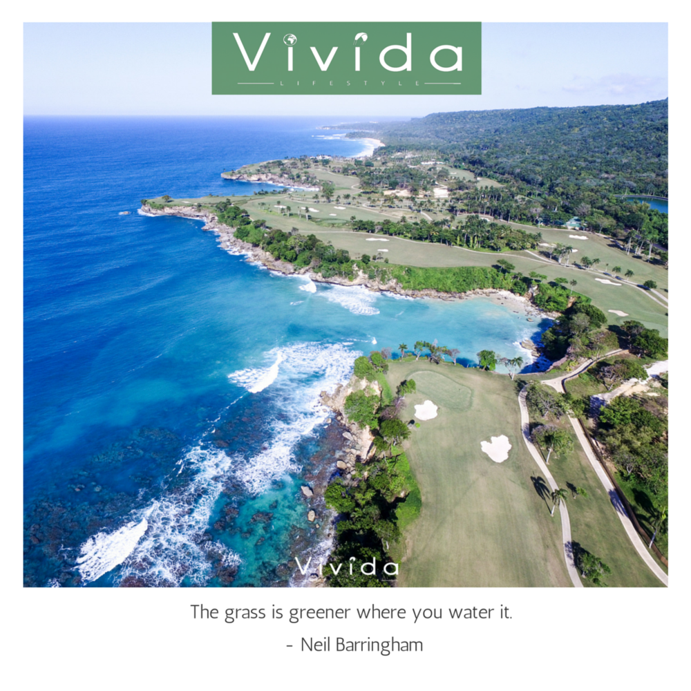 Vivida quotes that inspire - the grass is greener where you water it