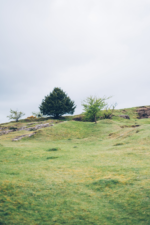 George Bale Mendip Hills 2