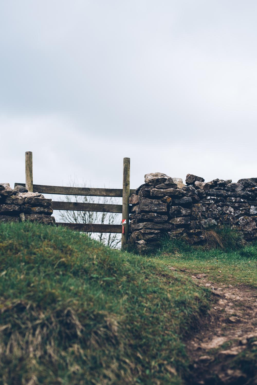 George Bale Mendip Hills 3