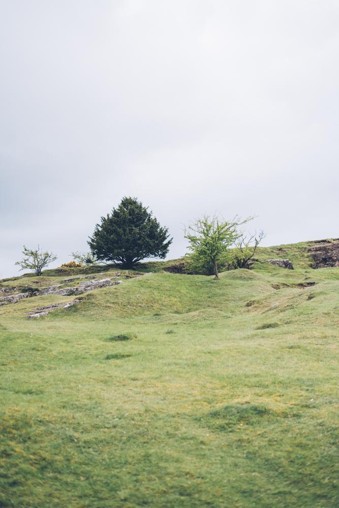 Mendip Hills - Somerset